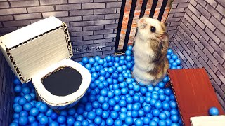 🐹🦂Scorpion maze with Traps hamster Police Pets 🐹 in Hamster stories