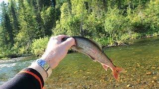 Рыбалка на мушку