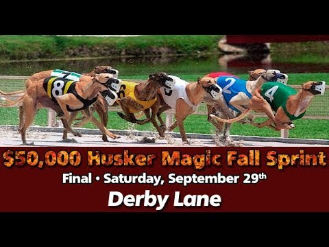 2018 Husker Magic's Fall Sprint Stakes