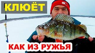 Где рыба клюет в челябинской области