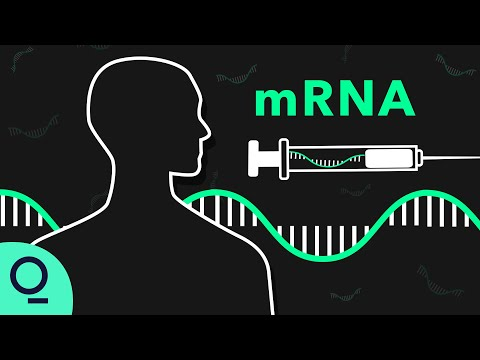 How mRNA Technology Could Be Used to Fight Cancer