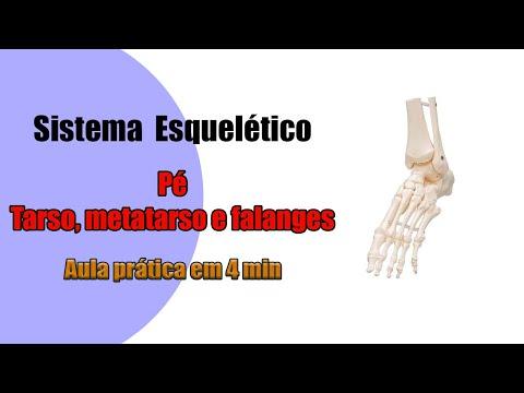 No no articolazioni del corpo umano