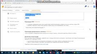 Видеоблиц - за 5 минут ставим счтчики Яндекс и Google