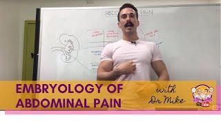 Abdominal Pain | Digestive System