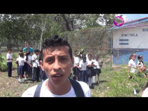 Movimiento Ambientalista Guardabarraco realiza reforestacion