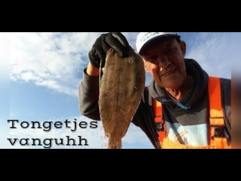 Op Tong vissen aan Vlaardingen, de film