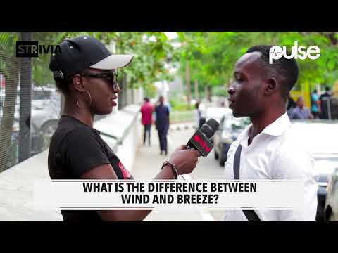 What's The Difference Between Wind And Breeze? | Strivia | Pulse TV