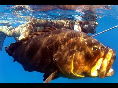 Il nolo per mare che pesca per comprare