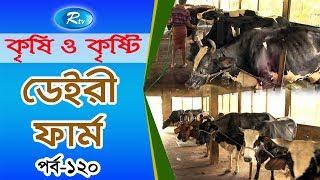 Krishi O Krishti | ডেইরী ফার্ম | Dairy Farm | Rtv Lifestyle