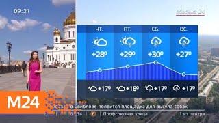 """""""Утро"""": днем в среду воздух прогреется до +28 градусов - Москва 24"""