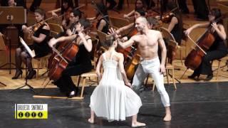 Strauss: El Bello Danubio Azul / Sinfónica Ciudad de Zaragoza