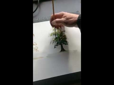 Thumbnail of How to paint a summer tree using watercolour #colinsteedart