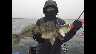 Веселовское водохранилище рыбалка 2020 кто был