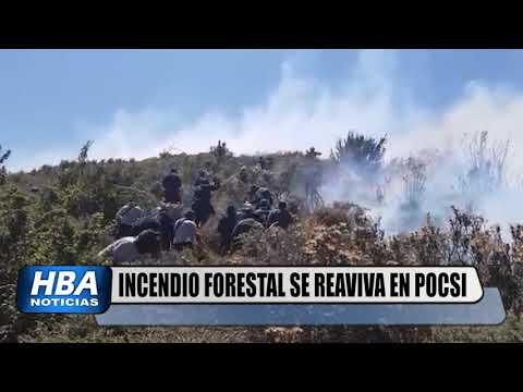 HBAnoticias. Incendio forestal entre Arequipa y Moquegua