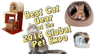 Best Cat Gear for year 2016