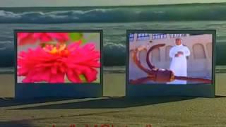 تحميل اغاني عبدالمجيد عبدالله شبكني فيديو كليب MP3