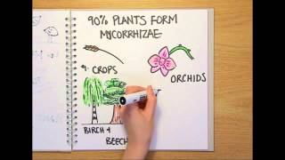 What is a fungus? - Naked Science Scrapbook