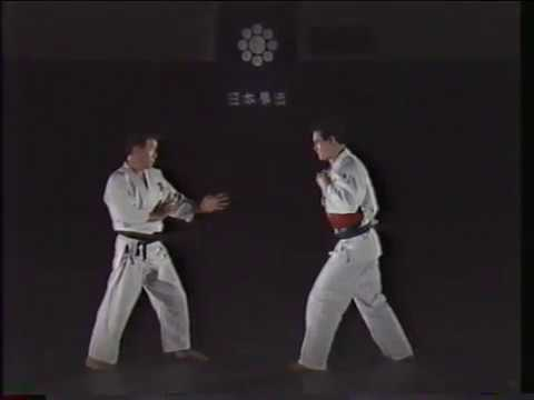 Nippon Kempo Basics part 1