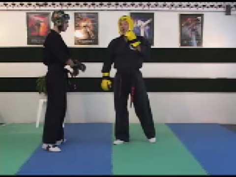 Sport Karate Sparring and Hand Positioning, Roundhouse ...