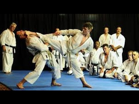 TOP 10 KARATE KNOCKOUTS