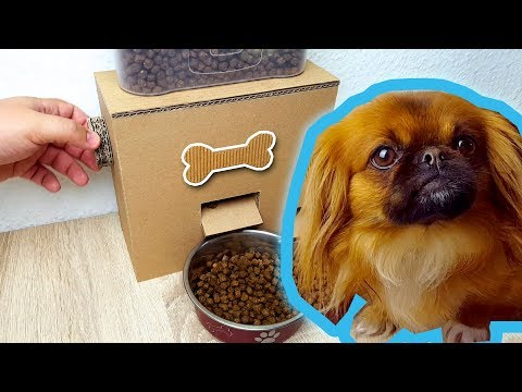 Diy Puppy Dog Food Dispenser From Cardboard At Home 4 15 Mb