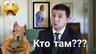Паранормальное явление или все же Юлия Мендель на заднем фоне интервью Зеленского