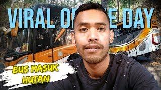 VIRAL HARI INI: Video Bus Sudiro Tungga Jaya Nyasar di Hutan Disesatkan Hantu, Ini Faktanya