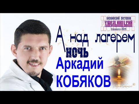 Аркадий КОБЯКОВ - А над лагерем ночь (Красноярск, 2014)