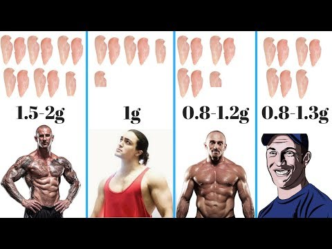 mp4 Bodybuilding Protein Needs, download Bodybuilding Protein Needs video klip Bodybuilding Protein Needs