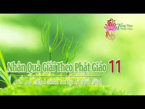 Nhân Quả Giải Theo Phật Giáo -11