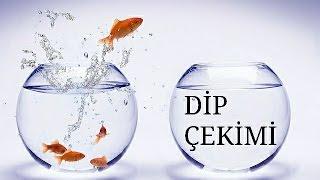 Su Değişimi – Dip Çekimi