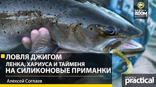 Рыбалка на ленка советы