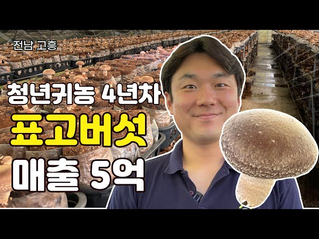 [전남, 고흥] 32살 강사 그만 두고 표고버섯으로 귀농한 사연