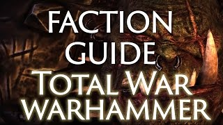 Total War Warhammer: Overall Factions Guide