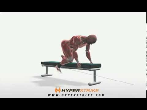 Exercise Videos- Cable Bent-Over Hip Extension -- Bench