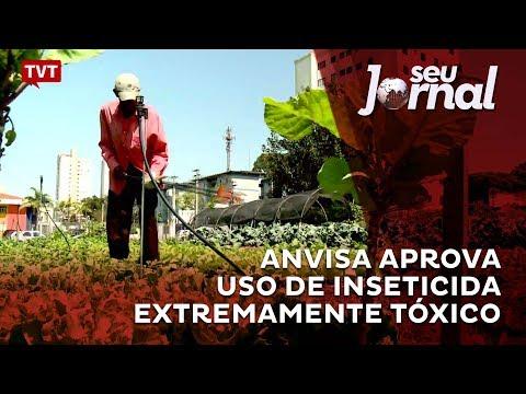 Anvisa aprova uso de inseticida extremamente tóxico
