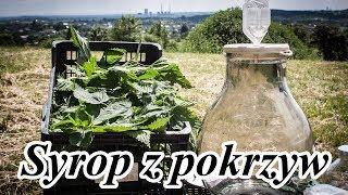 Syrop z pokrzyw - smaczny i zdrowy przepis!