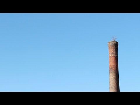 Poe Mill // Greenville's Skate Spot Revitalized