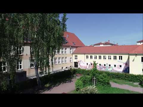 Single party regensburg 2019