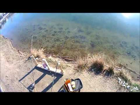 Fishing Trip: Trout Fishing @ Willow Pond 3/31/14