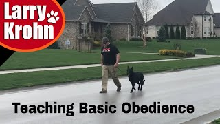 Teaching basic dog training obedience to owners