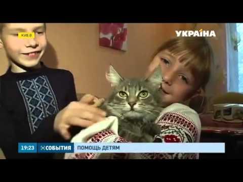 6 летнюю переселенку из Донецка Викторию готовят к операции в столичном Охматдете