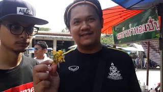 preview picture of video 'ตะลุย อีเว้นท์ : ตอน พาตะลุยน้ำตกไพรวัลย์'