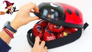 Huevos Sorpresas De Ladybug