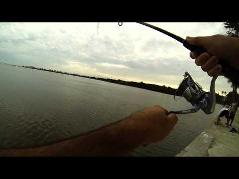 I coltelli mettono per pesca
