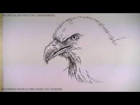 Download Pen And Ink Drawing Tutorials Portrait Drawing Demonstrati