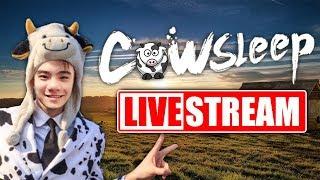 COW LIVE • PUBG KIẾM TOP 1 CÁI NHẸ