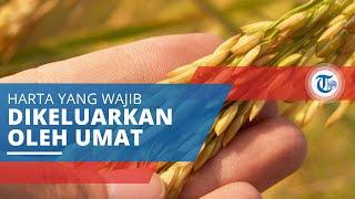 Zakat, Harta yang Wajib Dikeluarkan Orang Beragama Islam dan Diberikan kepada Golongan yang Berhak