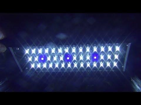 Aquarium LED Beleuchtung mit Nachtlicht für Nano-Becken Aquarien ECO Lampe