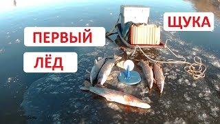 Первый лёд 2018-2019г . Ловля щуки на жерлицы.